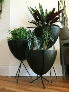 Bullet Planters Before + After