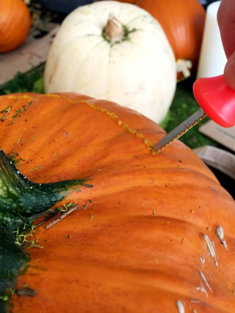 Food Network Pumpkin Seeds